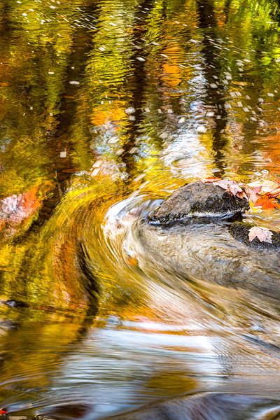 Fall Abstract on the Gratiot River