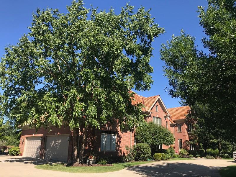 cedar-roofing-company-ab-edward-long-grove-il 7.jpg
