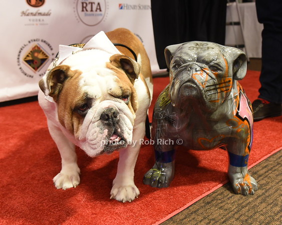 Long Island Bulldog Rescue Gala at NYU Rosenthal Pavillion on 12-7-18.  all photos by Rob Rich/SocietyAllure.com ©2018 robrich101@gmail.com 516-676-3939