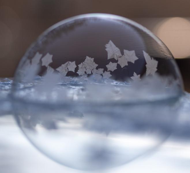 20190130-FrozenBubbles-Set3-2.jpg