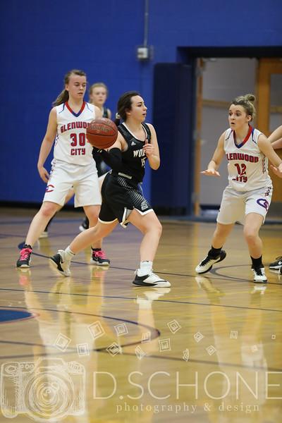GC Girl's Basketball vs. Elmwood Plum City-185.JPG