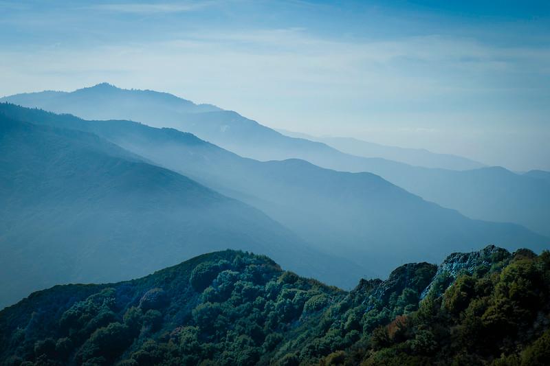 20140217-sequoia-001.JPG