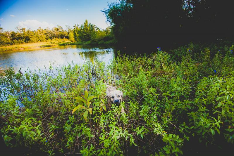 20140831-camping-61.jpg