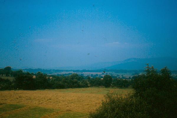 19730047.jpg