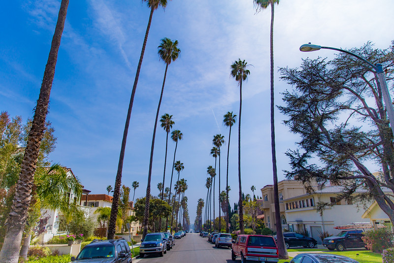 Today's moment of California has been brought to you by . . . The street that Jessi!! lives on.ff