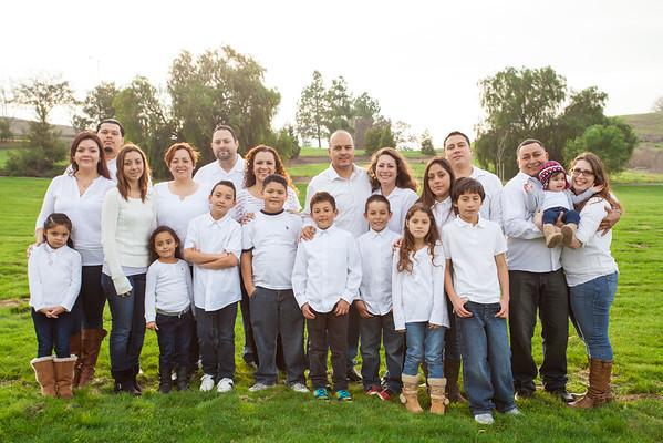 Ibarra Family 2014