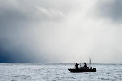 HIPPA Island 2014