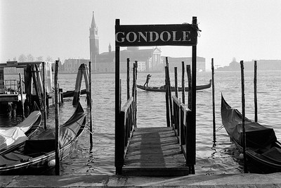Venice 2016-2017