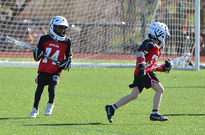 Brookline U9 Boy's Lacrosse 2010