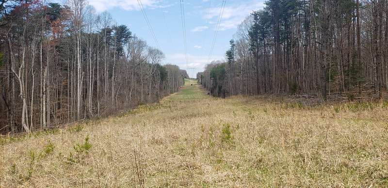 Power line through property - excellent hunting
