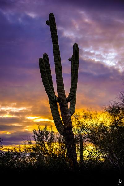 East of Phoenix, Colorado
