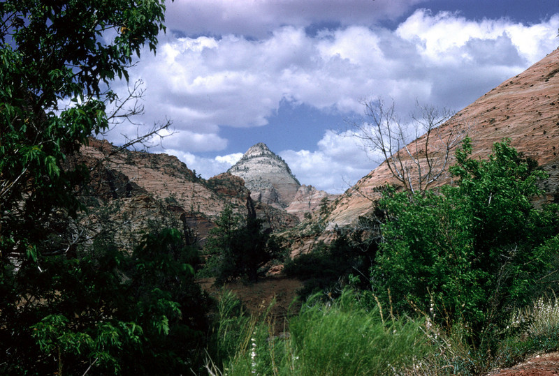 Beehive in Zion National Park