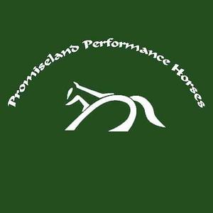 Promiseland Performance Horses