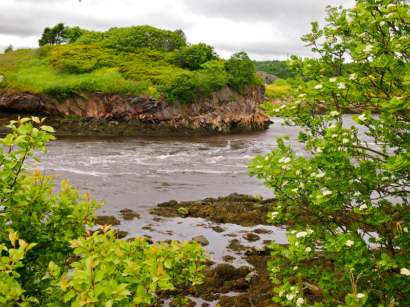 Near the Bay of Fundy in New Brunswick