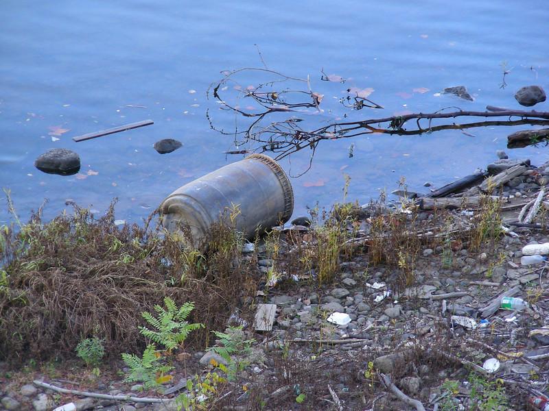 Riverbank detritus