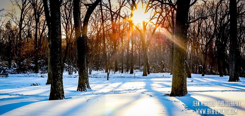 winter 2013 [ny]