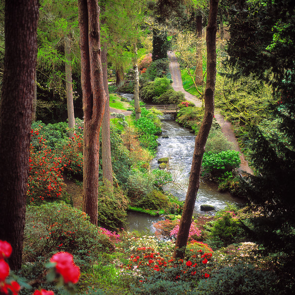 Bodnant Gardens.jpg