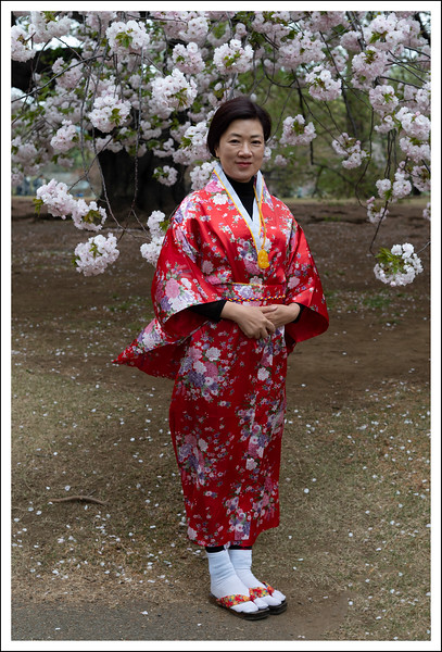 There were hundreds of Chinese tourists in the park the day we visited.  This is a lady who asked me, in English, to take her picture. Her Kimono is a little strange.