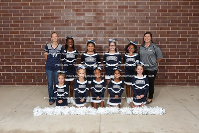 Little Hawks Cheer