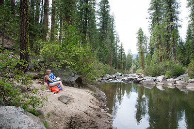 Camping near Sonora Pass