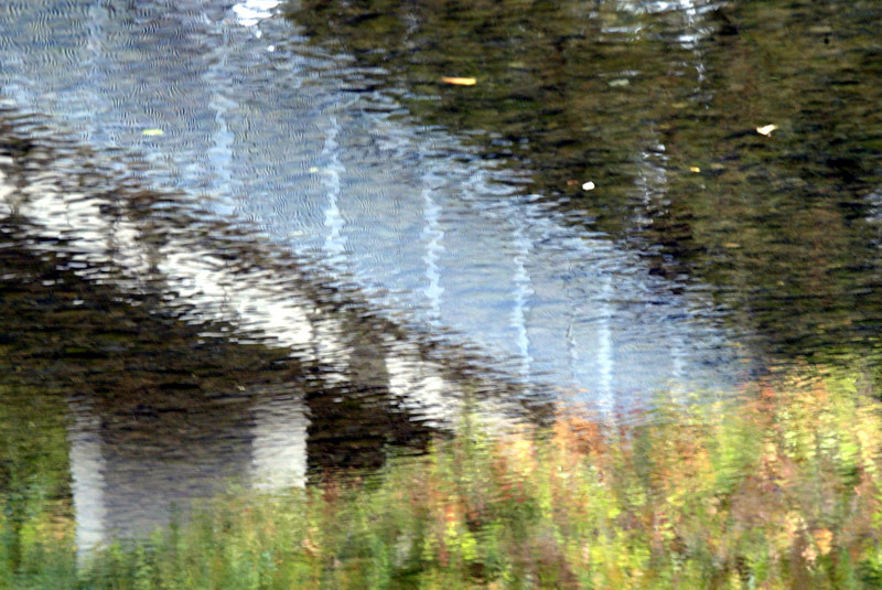 Fall colors mix with the first good rain of the season that hit the ground and Big Chico Creek Thursday around Five Mile Recreation area in Chico. - halley photo 11/2/06