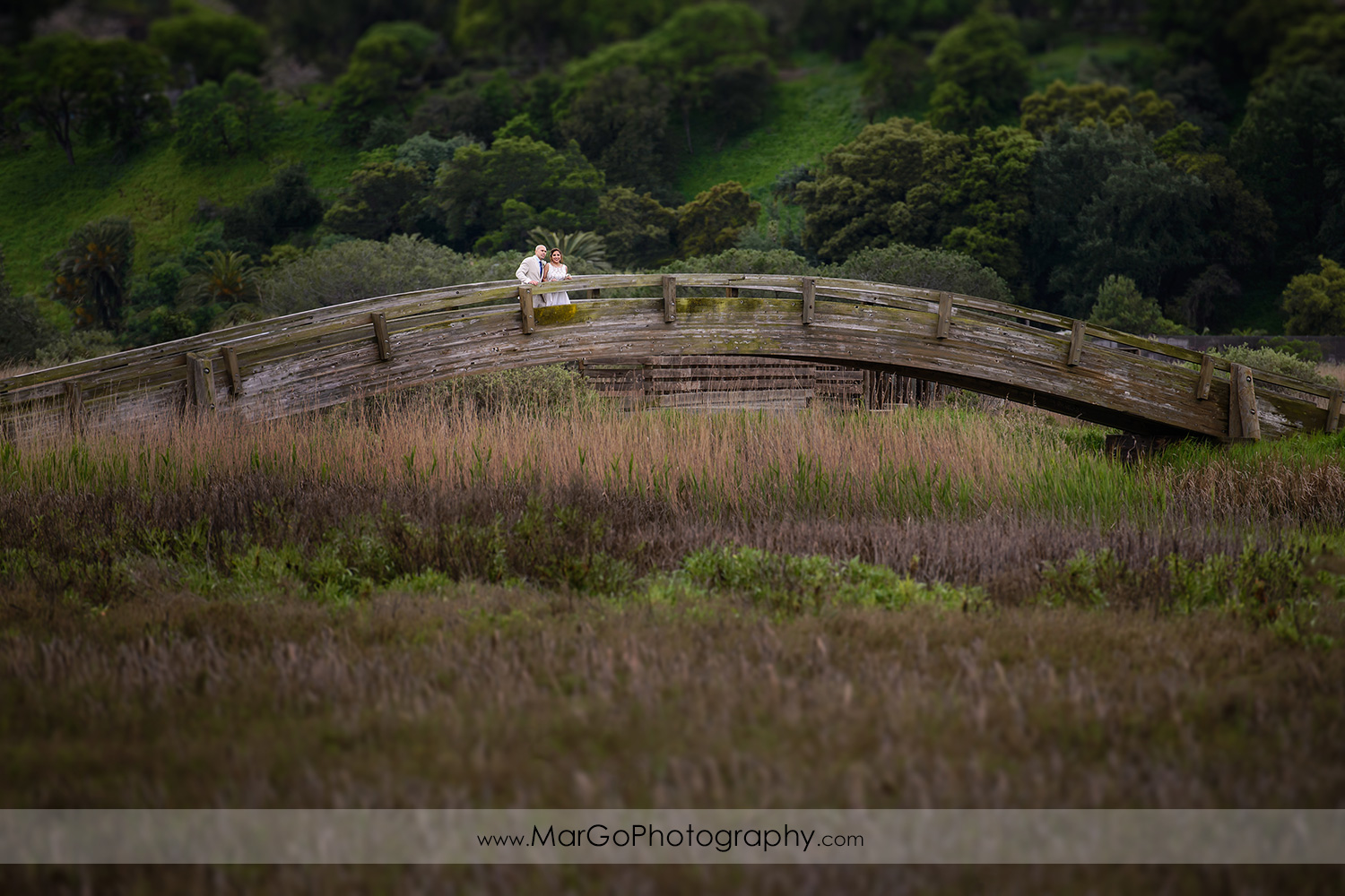bride and groom on the bridge at Martinez Regional Shoreline