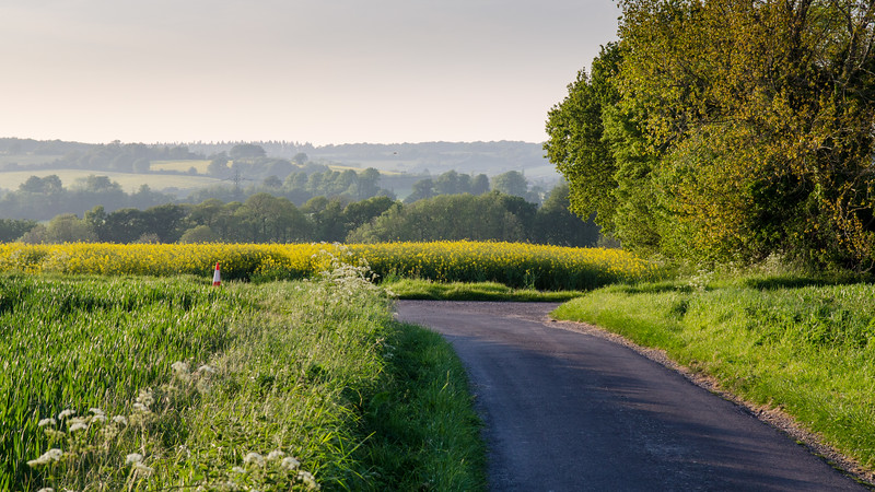 Hampshire fields and lanes