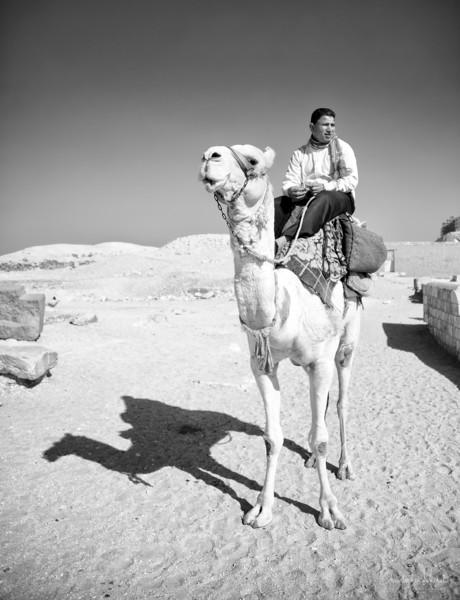 saqqara_unas_tomb_serapeum_dahshur_red_bent_pyramid_20130220_4905.jpg