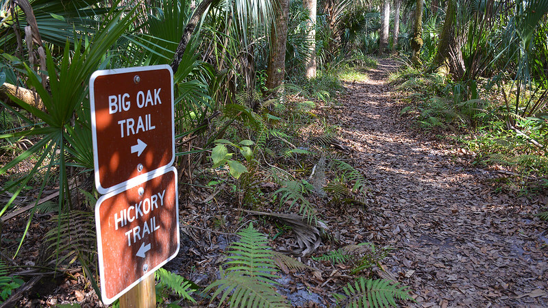 Signs for Big Oak Trail and Hickory Trail