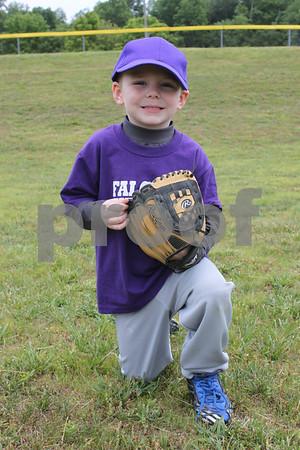 Little League Baseball and Softball proofs