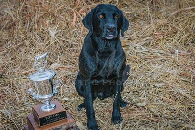 Hector Trophy
