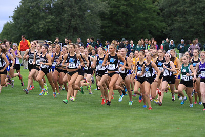 2013 Grand Valley State University Cross Country