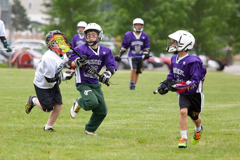 Essex Lax June 2012-50.jpg