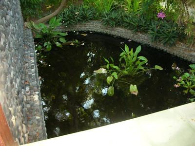 Bali Tulemben 2005