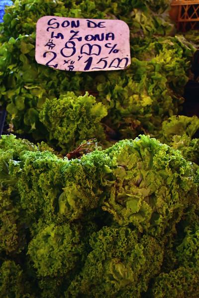 2016 valdivia lettuce close up.jpg