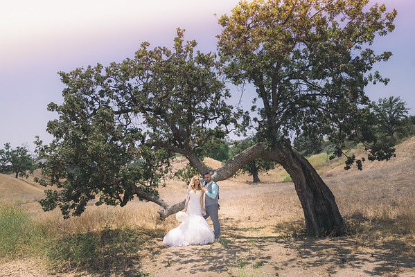 Manuel + Marisol Santa Clarita Wedding