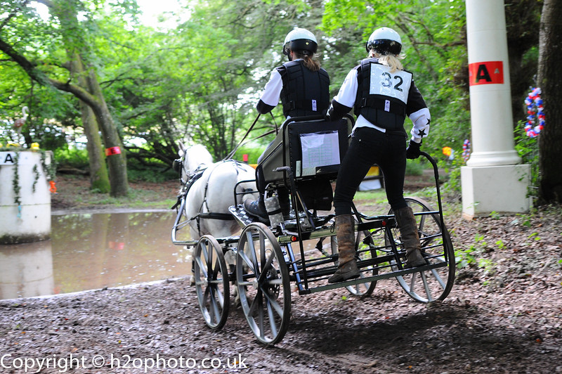 Brockham Harness Club - Carriage Driving (Goodwood - 24-Jul-16)