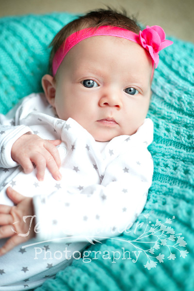 Hadley - 1 Month Old