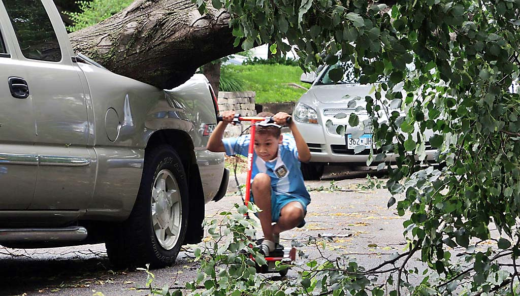 . A young boy ducks as he rides his electric scooter underneath a large boulevard tree that fell on a parked pickup truck in the 3100 block of James Avenue South in Minneapolis. (Pioneer Press: Chris Polydoroff)