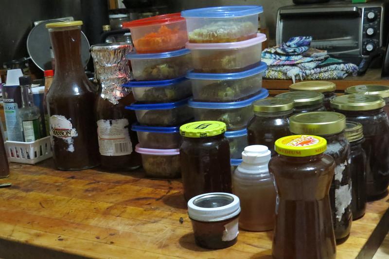 honey harvest.JPG