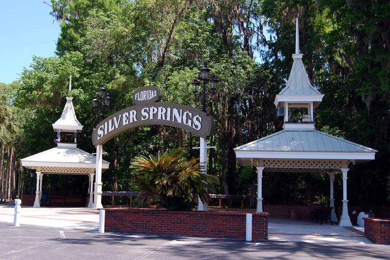 2014 Silver Springs, Florida (2).JPG