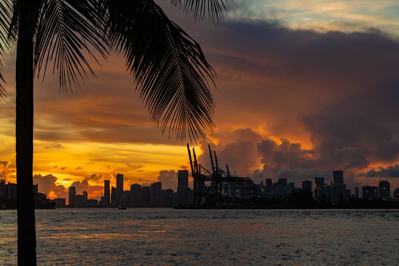 Miami-173.jpg