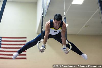 Still Rings from Michigan Men's Gymnastics Vs Nebraska 2-8-14
