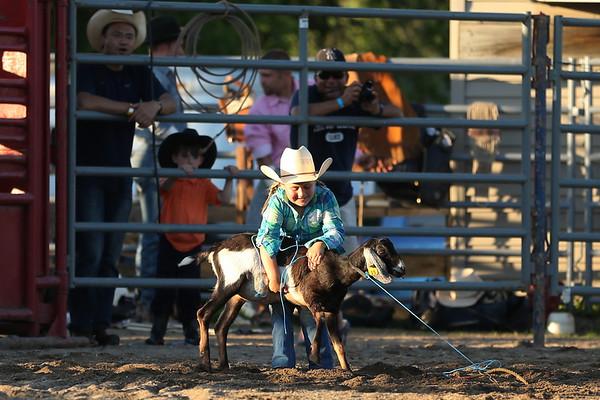 Skillman Rodeo 2014