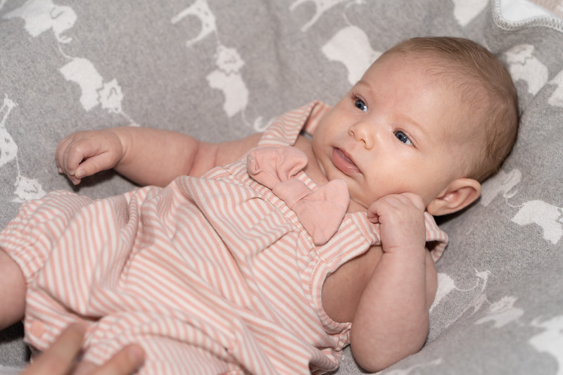 Mikayla 6-weeks 03265 by Art M Altman 2018-Aug.jpg