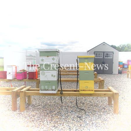 09-22-18 NEWS beekeepers