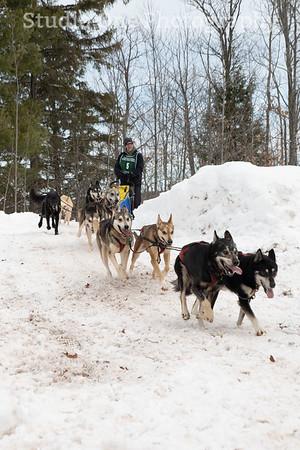 Apostle Island Sled Dog Race 2020