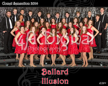 Ballard Illusion