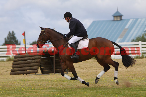 2009 10 10 Horseland Young Event Horse b
