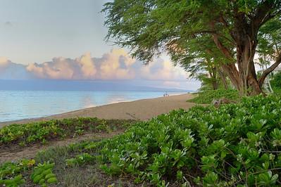 Maui Feb 2013